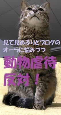 f:id:hentekomura:20171020152232j:plain