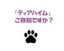 f:id:hentekomura:20171027201845j:plain