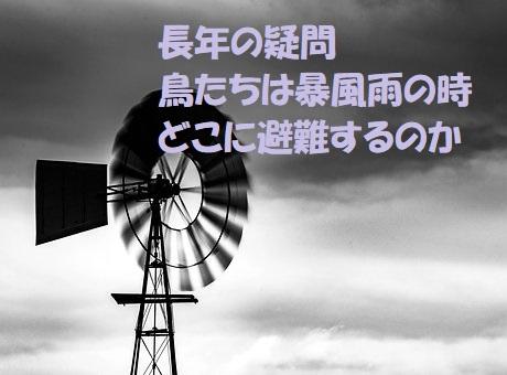 f:id:hentekomura:20171028185345j:plain