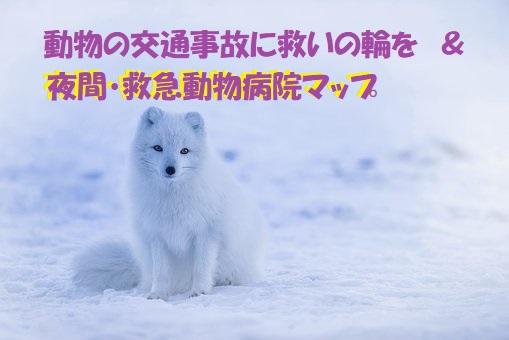 f:id:hentekomura:20171213160805j:plain