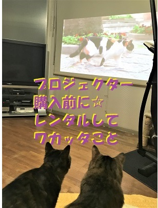 f:id:hentekomura:20180320013323j:plain