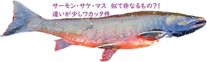 f:id:hentekomura:20181011143717p:plain