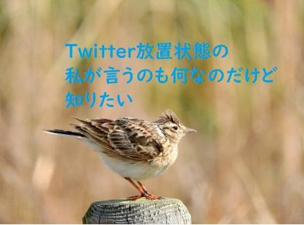 f:id:hentekomura:20181204105419j:plain