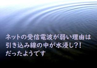 f:id:hentekomura:20181230105304j:plain