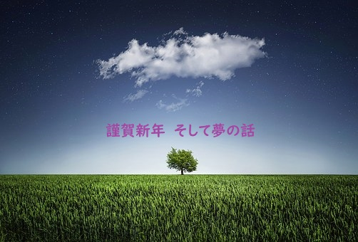 f:id:hentekomura:20190101184949j:plain