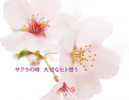f:id:hentekomura:20190322185526j:plain