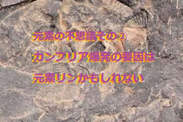 f:id:hentekomura:20200201160815j:plain