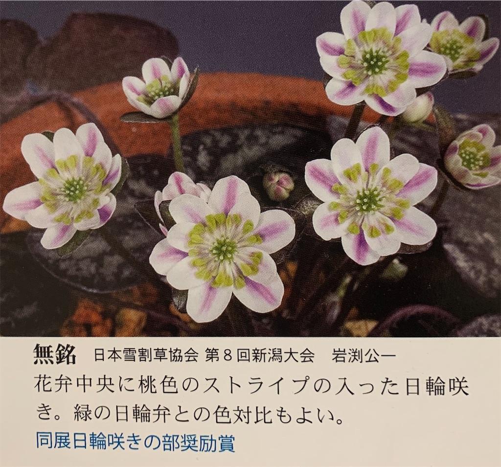 f:id:hepatica_japonica:20200416235249j:image