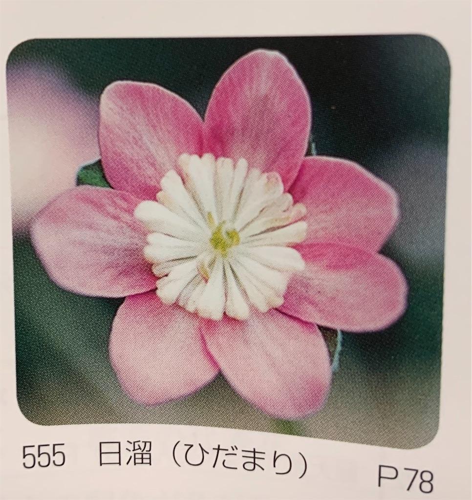 f:id:hepatica_japonica:20200426211858j:image