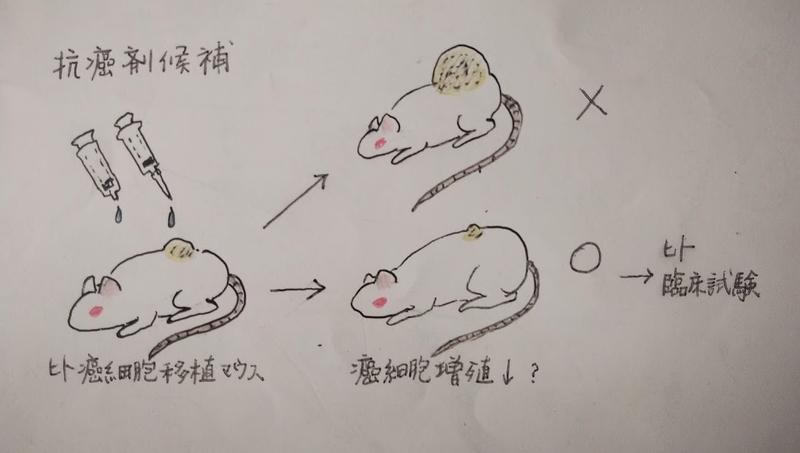 f:id:herakoimFujito:20210102115745j:plain