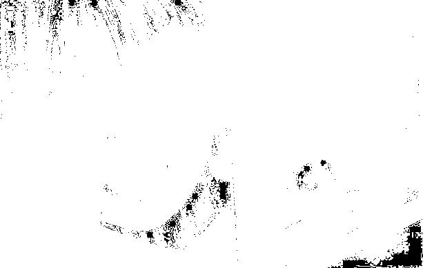 f:id:heresy505:20170226001251p:plain