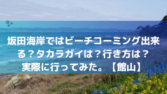 坂田海岸ではビーチコーミング出来る?タカラガイは?行き方は?