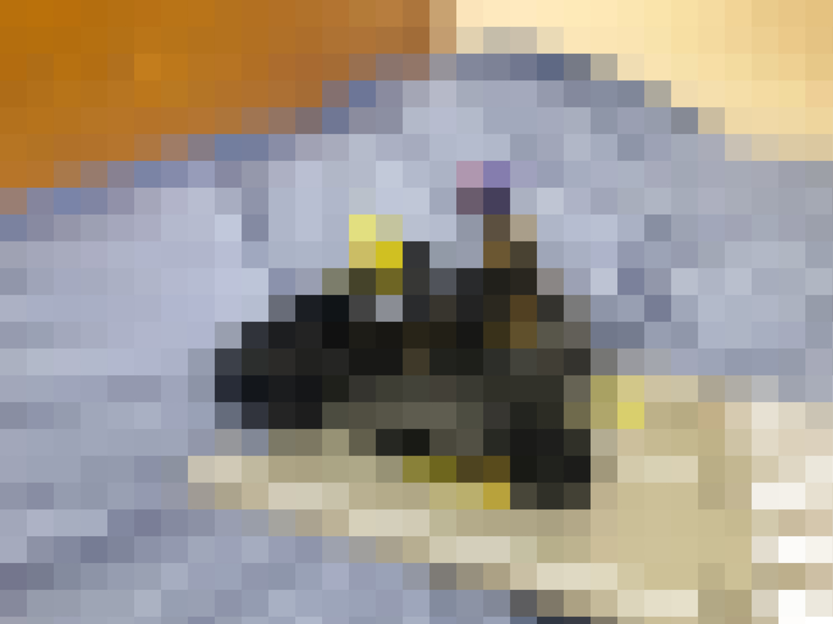 f:id:hgo687:20211002174512j:plain