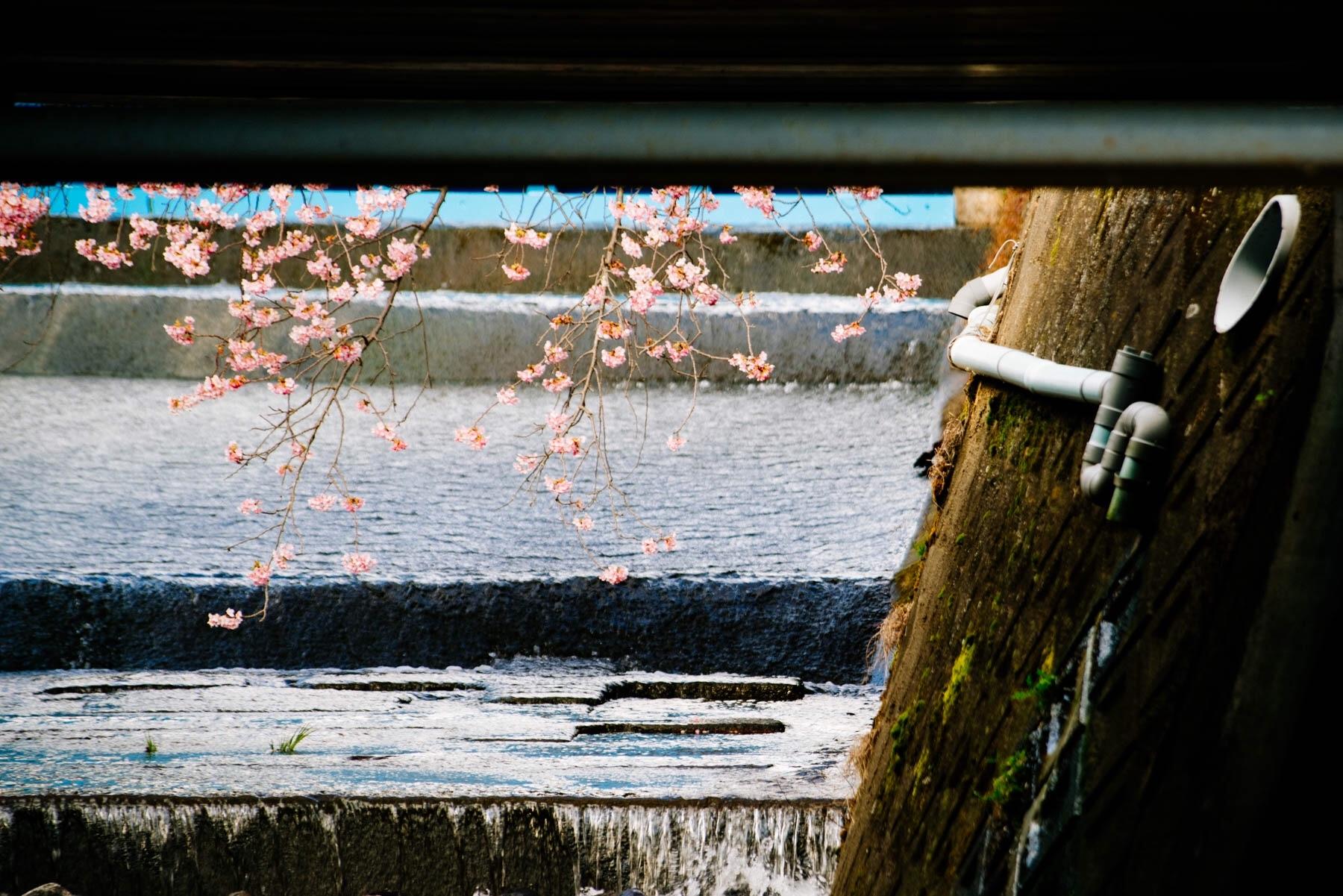f:id:hibi-mae:20170218190644j:image