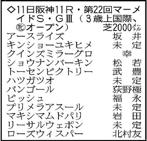 f:id:hibimoromoro:20170605105030j:plain