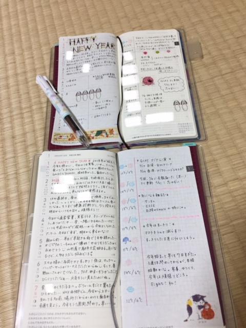 f:id:hibitanoshi:20180109212845j:plain