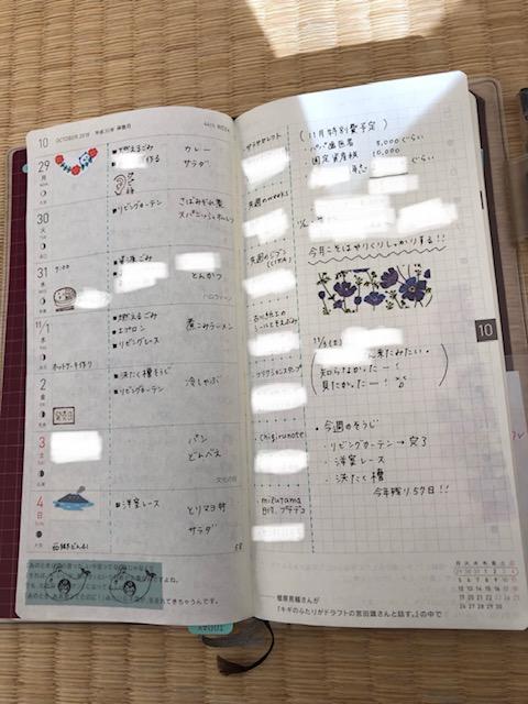 f:id:hibitanoshi:20181105094415j:plain
