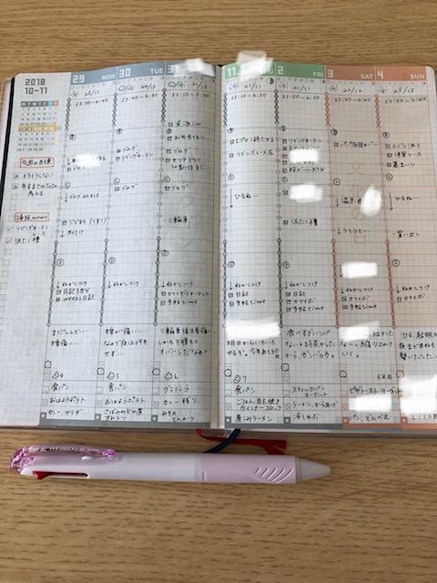 f:id:hibitanoshi:20181105124405j:plain