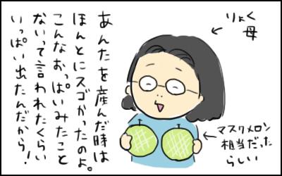 f:id:hiccyakameccyaka:20161223112058p:plain
