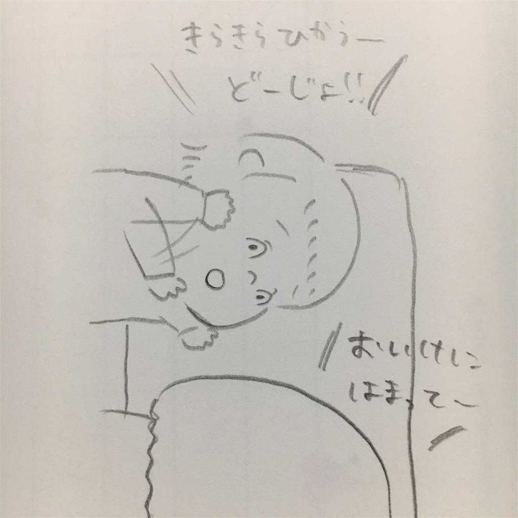 f:id:hiccyakameccyaka:20180316100620j:image