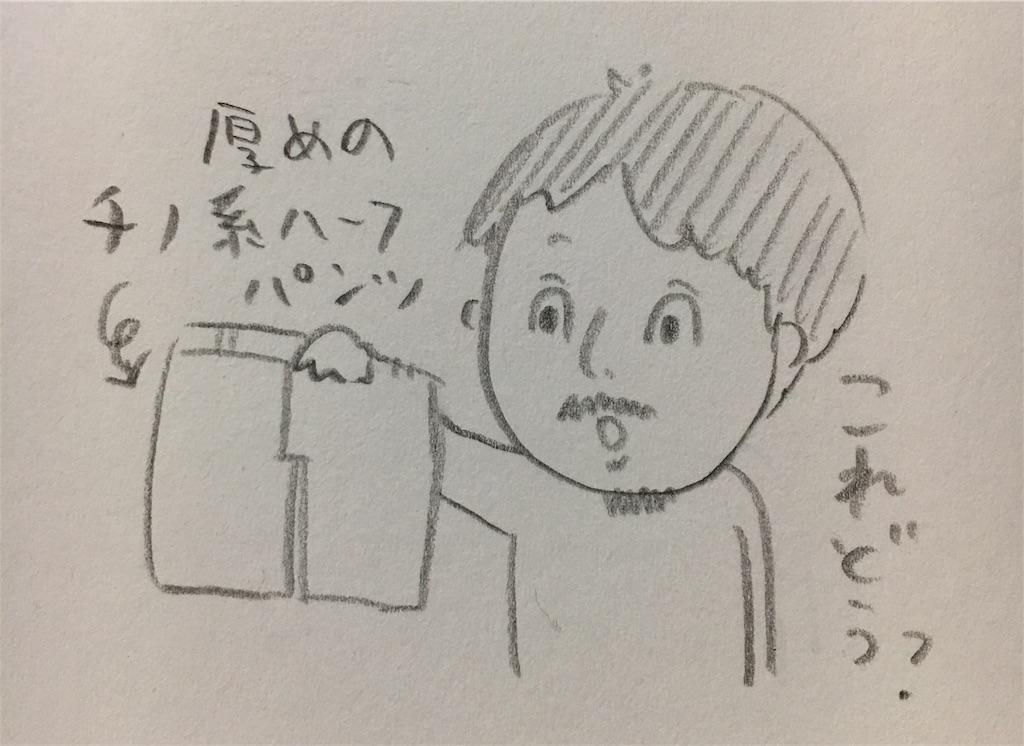 f:id:hiccyakameccyaka:20180806131746j:image