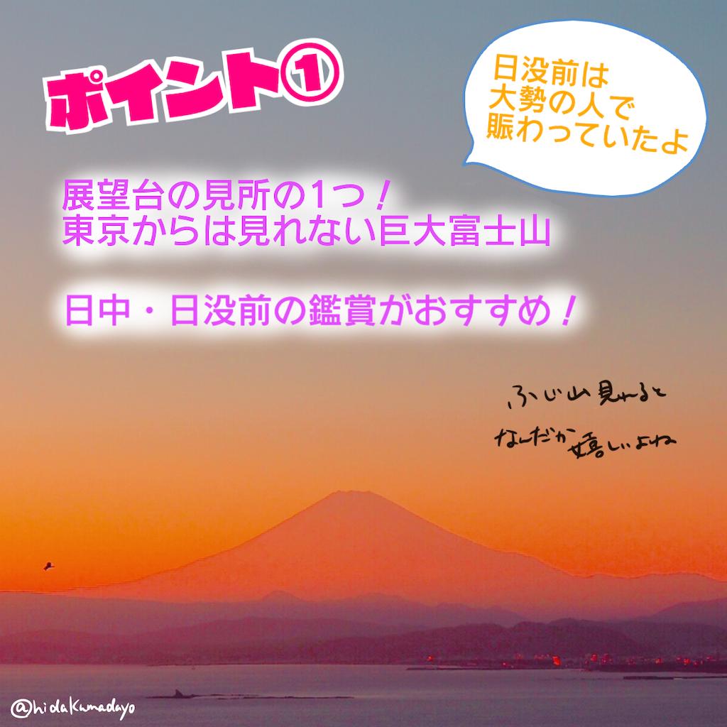 f:id:hidakumadayo:20190220093935p:image