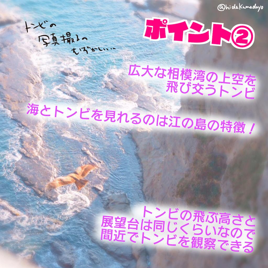 f:id:hidakumadayo:20190220094044p:image