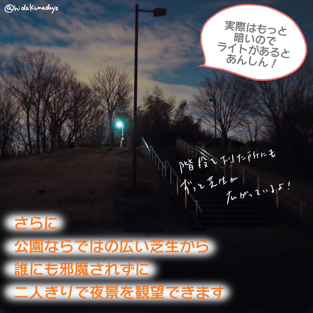f:id:hidakumadayo:20190224150550p:plain