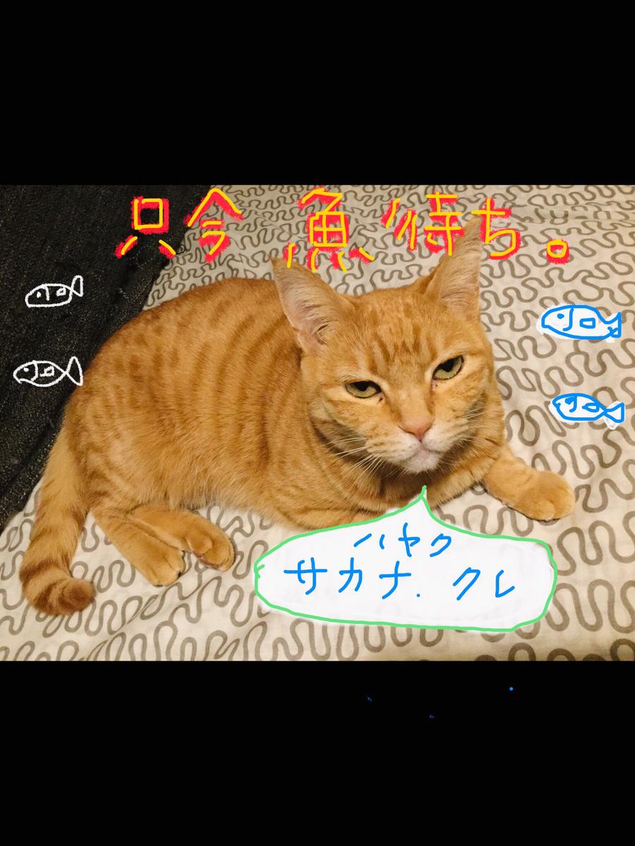 f:id:hidamari_cafe:20210210020505p:plain