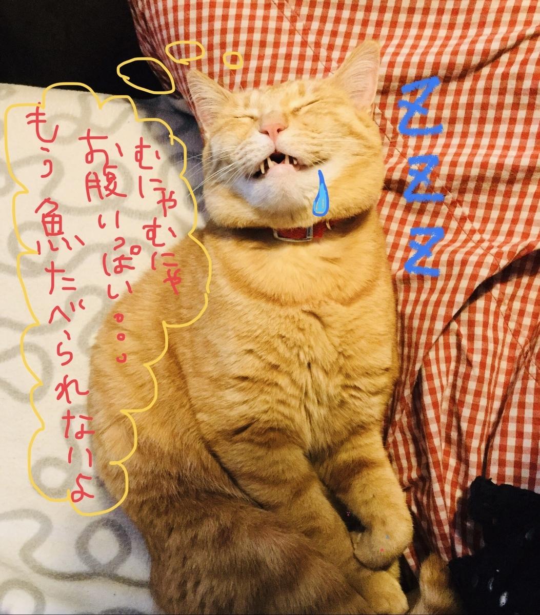 f:id:hidamari_cafe:20210210020541j:plain