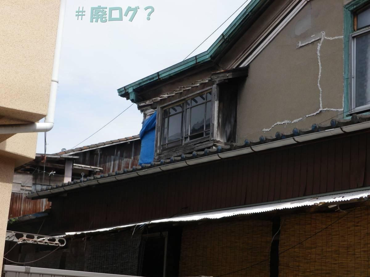 f:id:hidamaru:20190331204926j:plain
