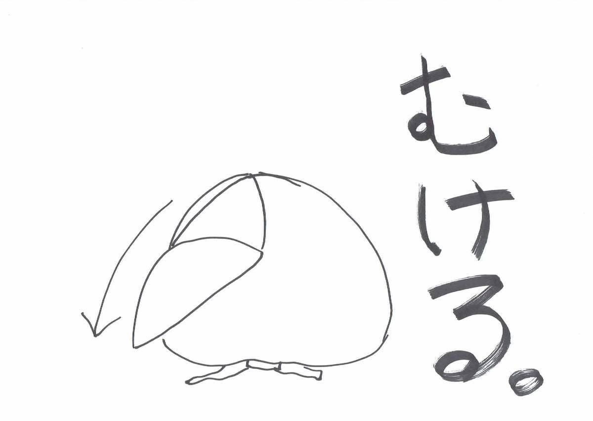 f:id:hidamaru:20190513134551j:plain