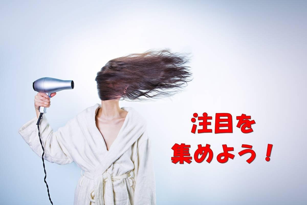 f:id:hidamaru:20190920224228j:plain