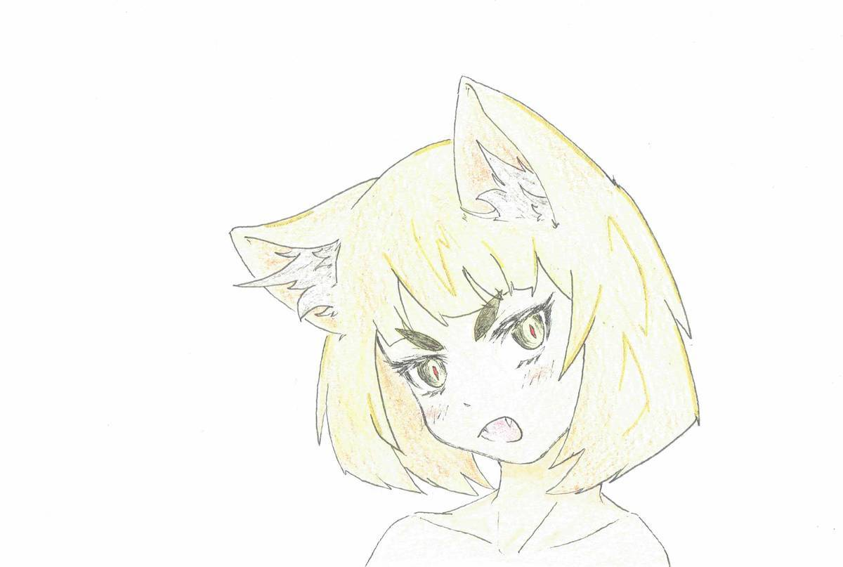 f:id:hidamaru:20191127020530j:plain