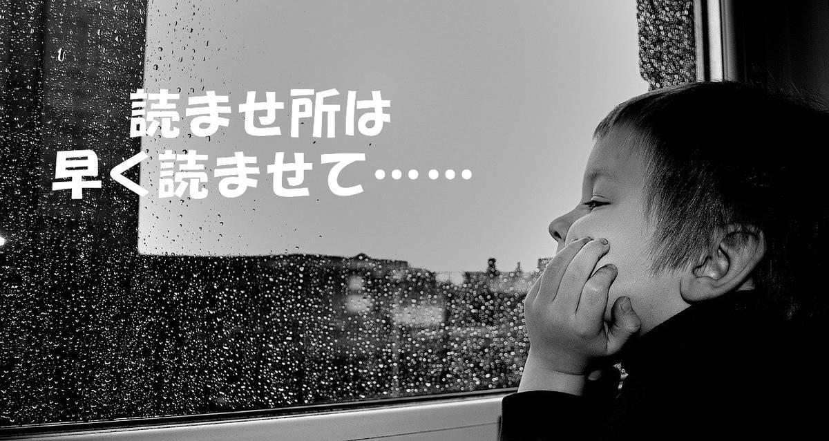 f:id:hidamaru:20200426165945j:plain