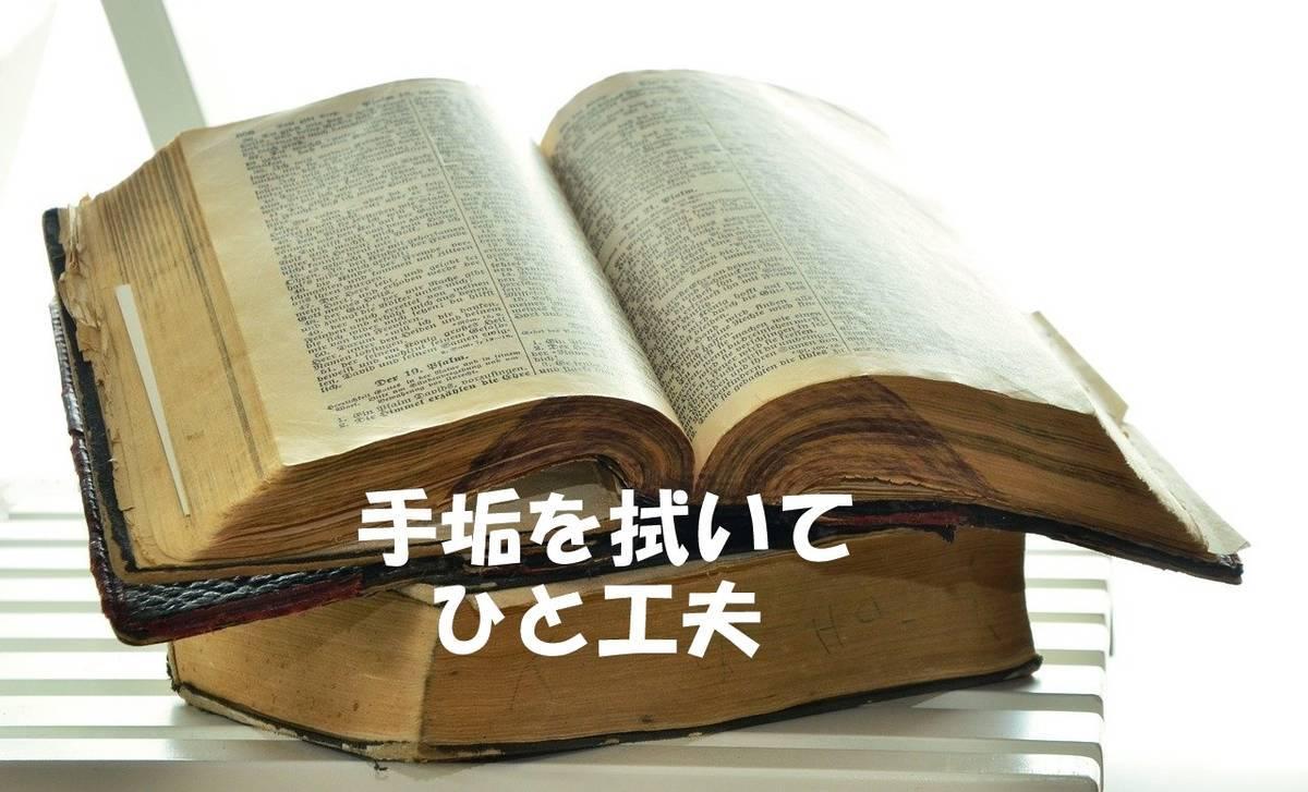 f:id:hidamaru:20200513152118j:plain