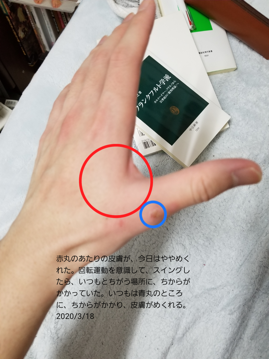 f:id:hide-himuro:20200318234307p:plain