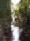 小川(昆陽池公園)
