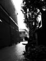 [白黒][街]
