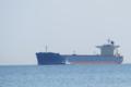 """E.R. BAVARIA"" 全長292m 幅45m 現代重工建造 船籍国: Liberia"