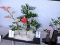 2012年10月21日-見事な盆栽...ではなく菓子祭で展示の菓子工芸 !