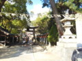 2016年1月1日-とりあえず近所の神社へ初詣に行きました