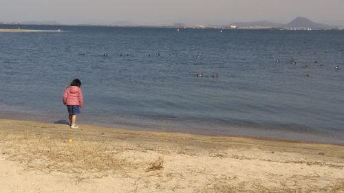 水辺の水鳥と孫