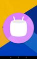 Nexus7(2013,LTE版)をMarshmallowにアップデート(5.1.1→6.0)、不具合検証