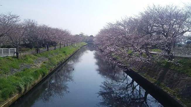 f:id:hidechi48:20170405140809j:plain