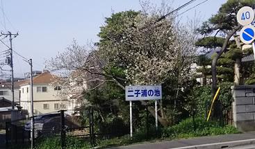 f:id:hidechi48:20170406135442j:plain