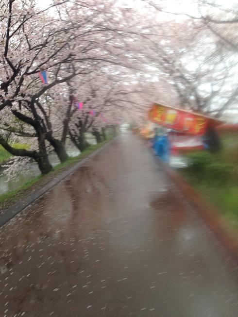 f:id:hidechi48:20170409103148j:plain
