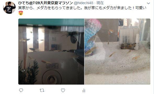 f:id:hidechi48:20170706161000j:plain