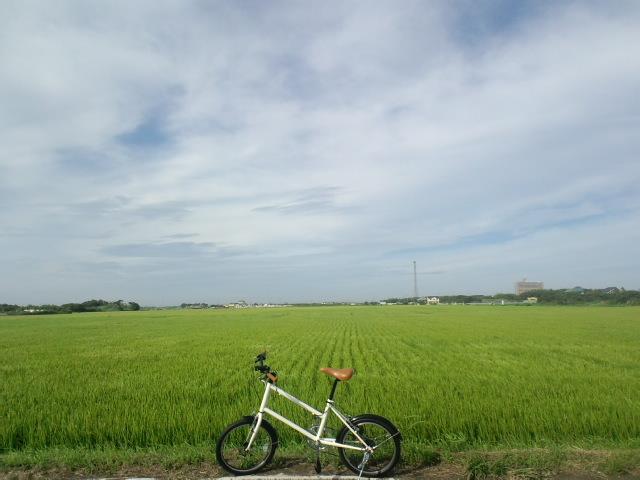 f:id:hidechichi:20200718175201j:plain
