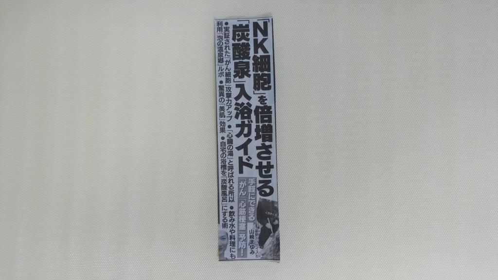 f:id:hidejirokun:20190215165510j:plain
